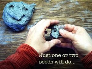 6-make-seed-balls