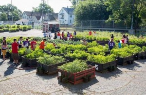 A raised bed garden in Detroit using shipping crates from General Motors. Photo: John F. Martin for General Motors
