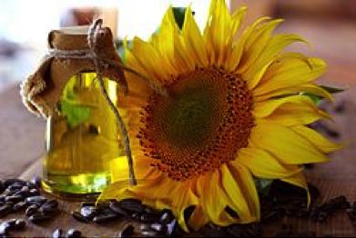 sunflowerInfusion